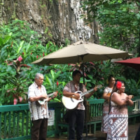カウアイ島のシダの洞窟で生演奏