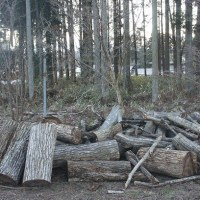 薪の運搬 そのニ