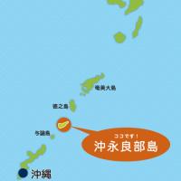沖永良部島から、一週間泊り込みでプロコースを!