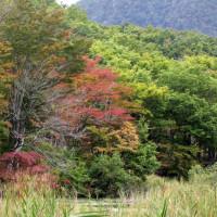 10月12日 初秋の観音沼紅葉
