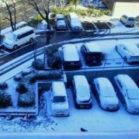 初雪の朝★