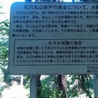 蛍が飛ぶ藤沢市石川丸山谷戸です