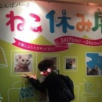 ねこ休み展へGO!!