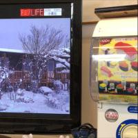 福島放送さんのドミソラで 小麦丘さんが紹介されました。