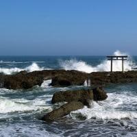 ひたち海浜公園 コキアカーニバル