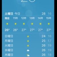 雨上がりの 暑い日は   やーね