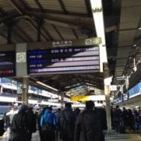 東京きてます
