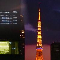 東京タワーがきれいに見える。