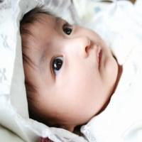輝ける無垢な瞳