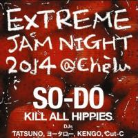 SO-DO LIVE 2014