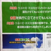 【祝】新潟知事選、原発再稼働反対派の米山隆一知事誕生!鹿児島に続いて原発立地県の再稼働反対が結実。