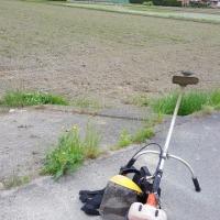 ハツシモ米の苗場に苗運びと草刈り