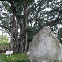 ●「歴史的暴言」、アベ様のシモベらの度の過ぎた差別意識の酷さ…無数の「沖縄差別」の氷山の一角が露見