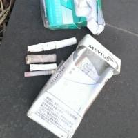 タバコのポイ捨て・・・!!ここは国立公園内・世界文化遺産ですよ・・・!!