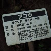 京大ウィークス・白浜と道成寺(5)