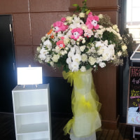 HKT48 研究生公演「脳内パラダイス」   4月9日  岩花 詩乃生誕祭