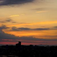 カワセミと今朝の朝焼け、日の出。 きょうの一句は「芒原」