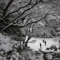 大文字山で雪山気分を堪能しました