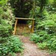 2017年7月17日(月) 猪名川町の里山・一本松山から、多田銀銅山を歩く