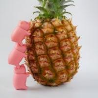 パイナップルと子ブタちゃん (pineapple and piggies)