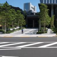 快晴の東京ガーデンテラス:清水谷通りを通り抜けて清水谷公園へ PART2