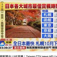 《ひとりごと》紅葉の見頃を台湾のニュースでしりました