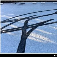 雪の朝 …