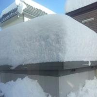 12月 50年ぶりの大雪 96Cm
