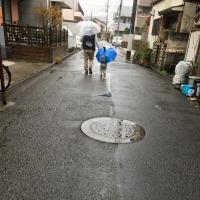 雨の日曜日。散歩とお昼ね。