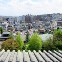 高幡不動尊 五重塔からの眺め