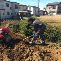 【畑の石拾い✨群馬県からお手伝いに来てくれました!】