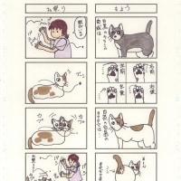 猫の4コママンガ39
