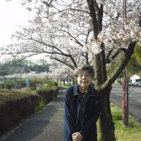 ☆ お花見 お墓参り ☆