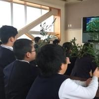 緑育の授業