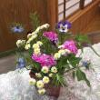 家のお花で