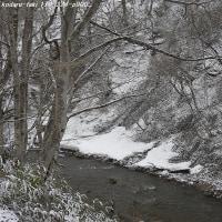 信州 大町市の滝  熊襲瀧(辺尾の滝)