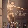 映画鑑賞『ダンサー、セルゲイ・ポルーニン 世界一優雅な野獣』