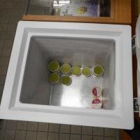 寒い日が続いても、手作りアイスが人気で、本日在庫なくなり、追加製造の準備・・・ソフトクリームの機械を殺菌&組み立てです。