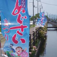 高知  春野  あじさい街道と紫陽花神社