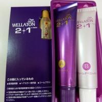 <monitor>HFC プレステージジャパン WELLATON 2+1