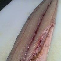 魚ログらしく!久々!魚の話題を!