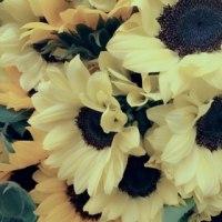 花束いろいろ♪