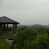 2016年も8月15日から水戸市森林公園大鍋展望台でタカの渡り観察を開始