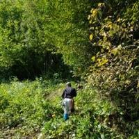 草刈り&植栽位置への準備作業