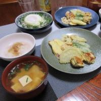 野菜の高騰で、家計がしんどいわ~  釜揚げシラス丼 天ぷら