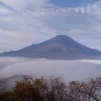 ハイキング・登山・花・木