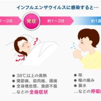 インフルエンザウィルスA型に感染し発症する。