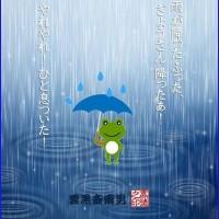 八十日目の雨!