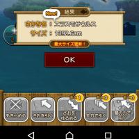 DQ10 続くツール釣り