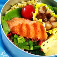 昼ご飯は、鮭と卵焼き(ぱんきちゃん弁当)